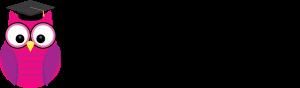 Steiner Web